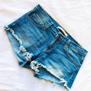 Flying Monkey jean shorts 27